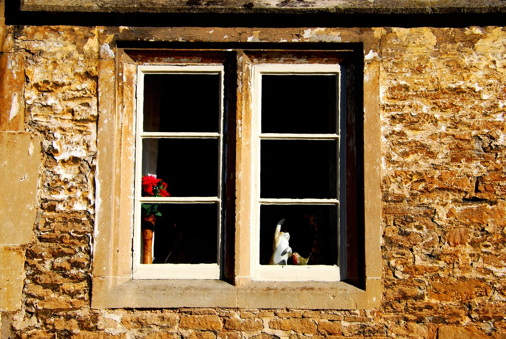 """Window"" by Angel Xavier Viera is licensed under CC BY-ND 2.0 CC BYND"
